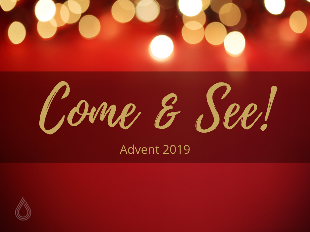 Advent 2019 - Come and See!